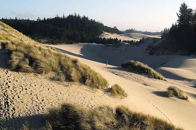 dunes-50068_640